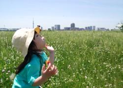 でっかい空と草原のなかで・・・
