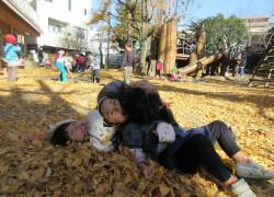 銀杏の葉っぱに身を埋める